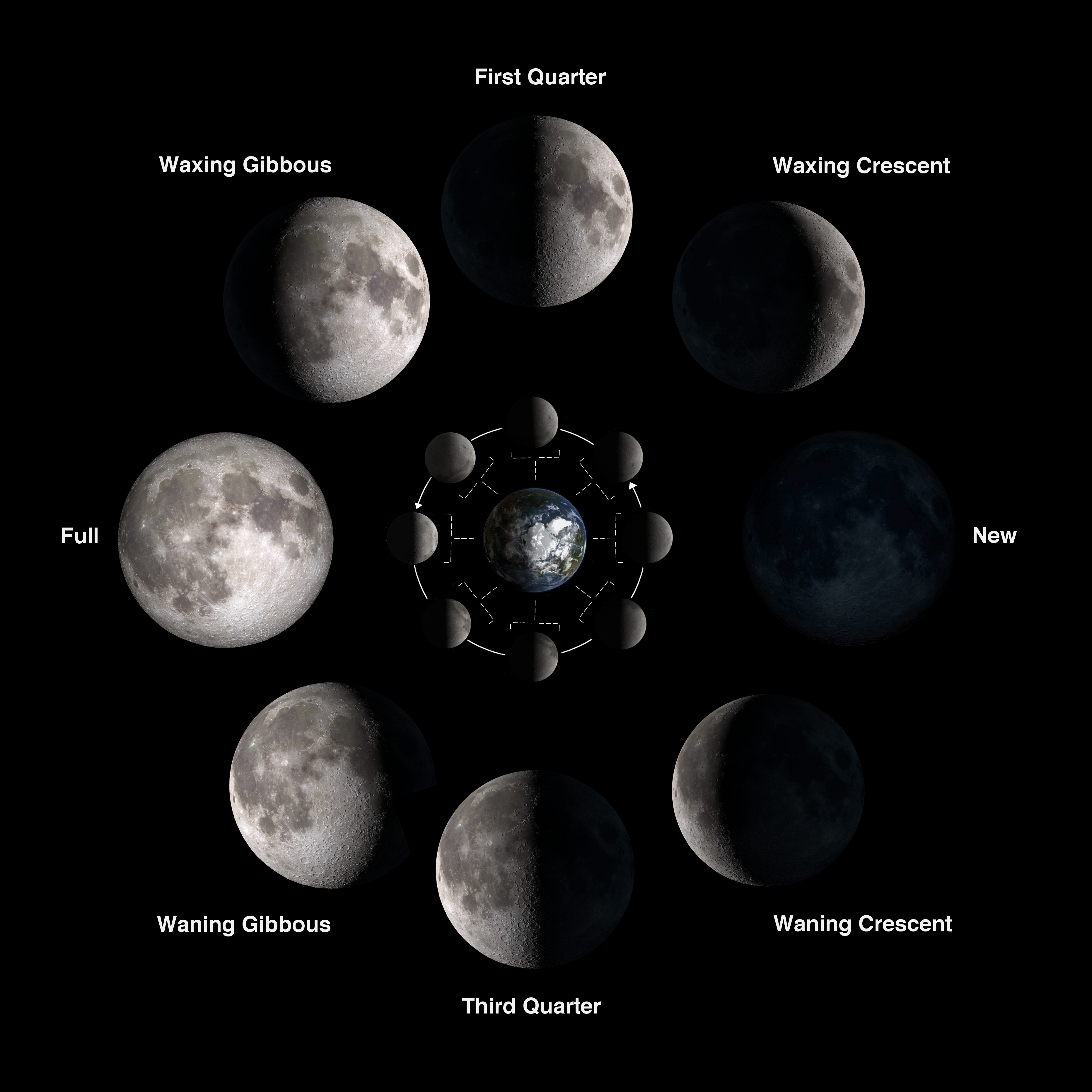 Phases of The Moon. Courtesy of NASA/Bill Dunford.